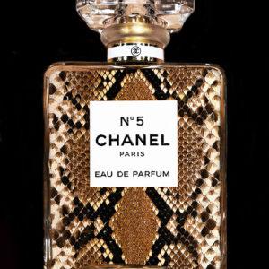 Chanel_snake